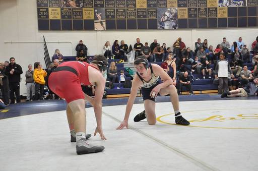 Eight Wrestlers Advance To PIAA District XII Championships