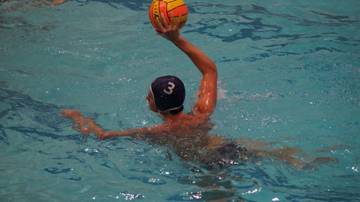 2017 Water Polo Team Season Preview